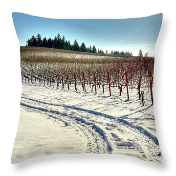 Soter Vineyard Winter Throw Pillow by Jerry Sodorff