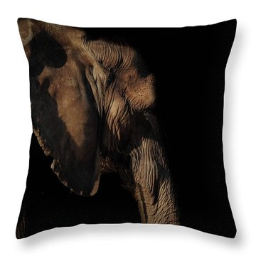 Soul Of The Planet Throw Pillow