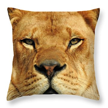Soul To Soul Throw Pillow