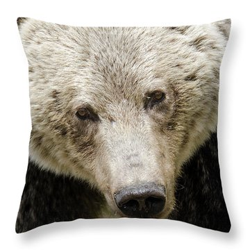Soulful Throw Pillow