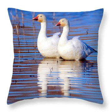 Soulmates Throw Pillow by Irina Hays
