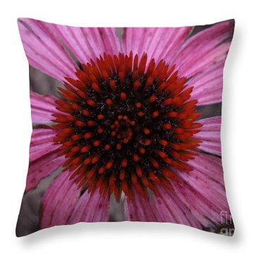 Soul's Edges Throw Pillow by Amanda Barcon