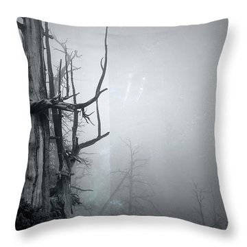 Souls Throw Pillow