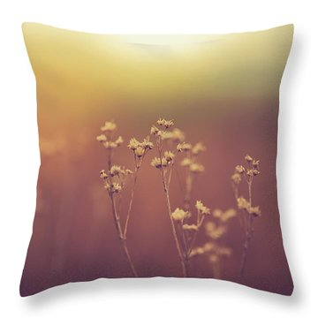 Throw Pillow featuring the photograph Souls Of Glass by Shane Holsclaw