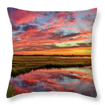 Sound Refections Throw Pillow