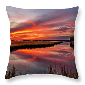 Throw Pillow featuring the photograph Sound Reflections by DJA Images