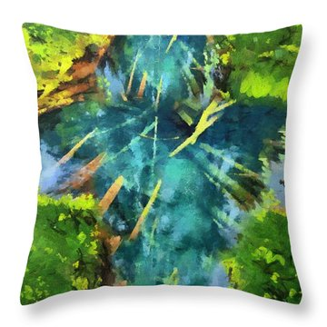 Source Of Water Throw Pillow