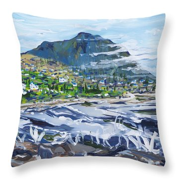 South African Coastline Part Three Throw Pillow