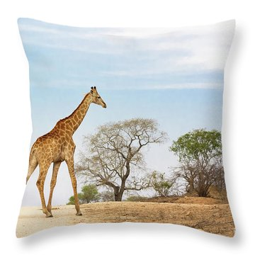 South African Giraffe Throw Pillow