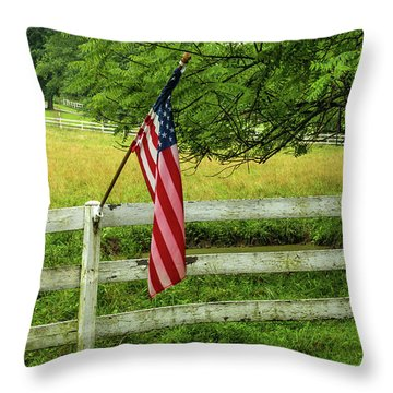 South Anne Arundel Throw Pillow