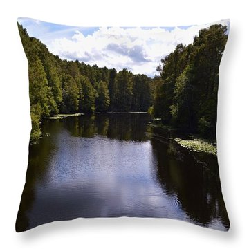 South Bound Throw Pillow by Warren Thompson