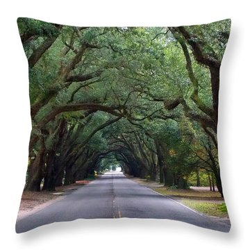 South Boundry Throw Pillow