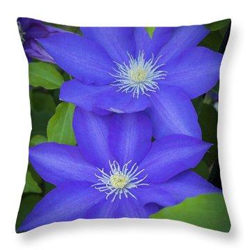 South Carolina Color Throw Pillow
