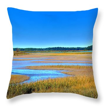 South Carolina Lowcountry H D R Throw Pillow