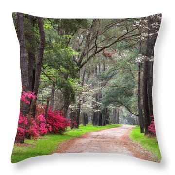South Carolina Lowcountry Spring Flowers Dirt Road Edisto Island Sc Throw Pillow