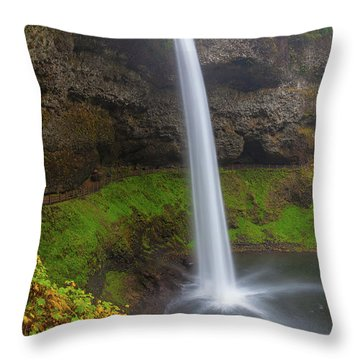 South Falls At Silver Falls State Park Throw Pillow by David Gn