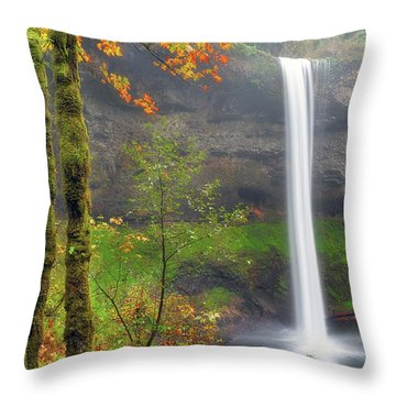 South Falls On A Drizzly Day Throw Pillow by David Gn