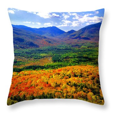 South Meadow Throw Pillow