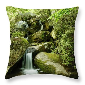 South Mountains Rest Stop Throw Pillow