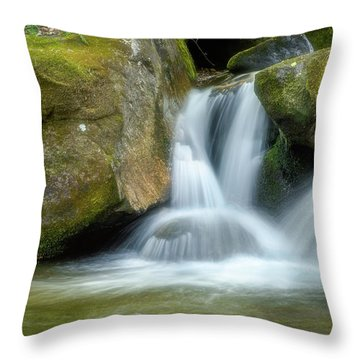 Throw Pillow featuring the photograph South Mtn State Park 2 by Joye Ardyn Durham