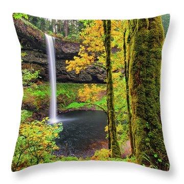 South Silver Falls Throw Pillow