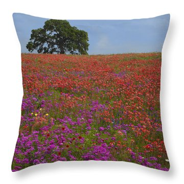 South Texas Bloom Throw Pillow