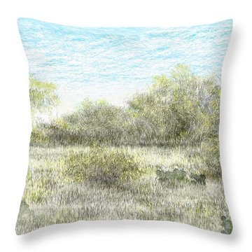 South Texas Brush Country II Throw Pillow