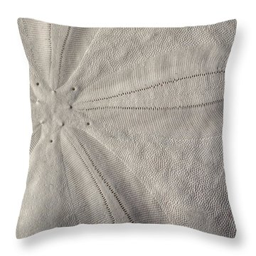 South Walton Currency  Throw Pillow