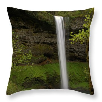 South Waterfalls Throw Pillow