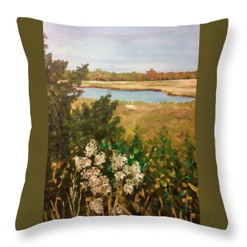 Southcoast Nostalgia Throw Pillow