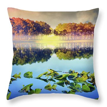 Throw Pillow featuring the photograph Southern Beauty by Debra and Dave Vanderlaan