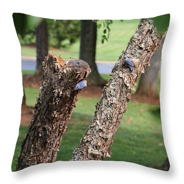 Southern Blue Birds Throw Pillow