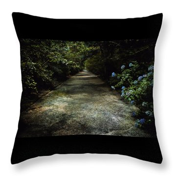 Throw Pillow featuring the photograph Southern Blue by Jessica Brawley