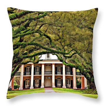 Southern Class Painted Throw Pillow
