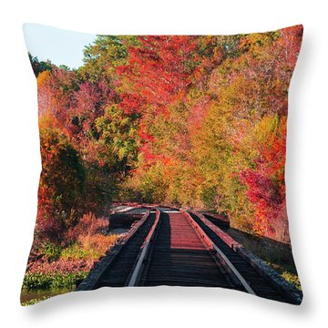 Southern Fall Throw Pillow by RC Pics