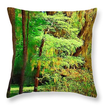 Throw Pillow featuring the photograph Southern Forest by Donna Bentley