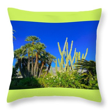 Southern France Beauty Throw Pillow