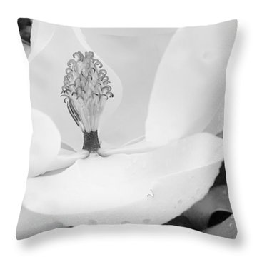 Southern Icon Throw Pillow by Dan Wells