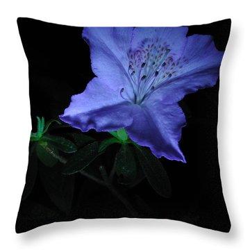 Southern Indica Azalea 1 Throw Pillow