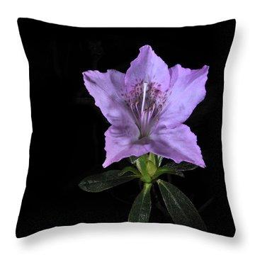 Southern Indica Azalea 2 Throw Pillow
