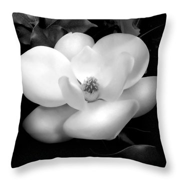 Southern Magnolia Passion Throw Pillow