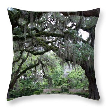 Southern Mist Throw Pillow by David and Lynn Keller