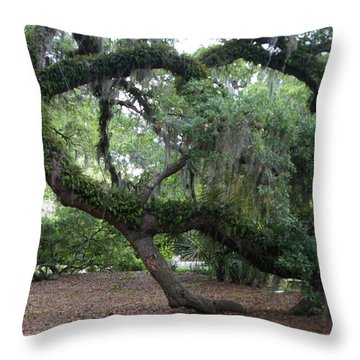 Southern Support Throw Pillow by David and Lynn Keller