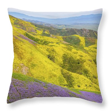 Throw Pillow featuring the photograph Southern View by Marc Crumpler