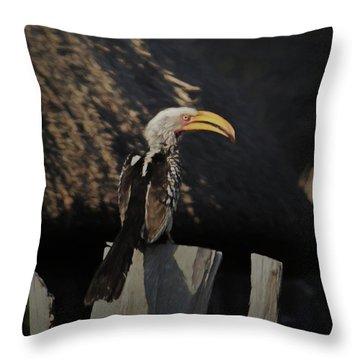 Southern Yellow Billed Hornbill Throw Pillow by Ernie Echols