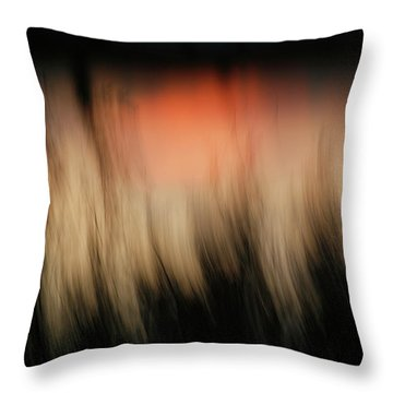 Throw Pillow featuring the photograph Southwestern Sunset by Marilyn Hunt