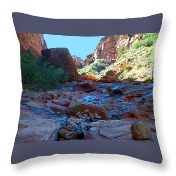 Sowats Creek Kanab Wilderness Grand Canyon National Park Throw Pillow
