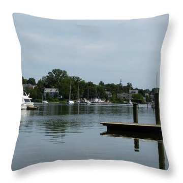 Spa Creek From The Park  Throw Pillow by Donald C Morgan