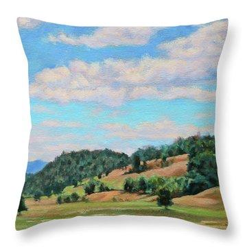 Spacious Skies Throw Pillow