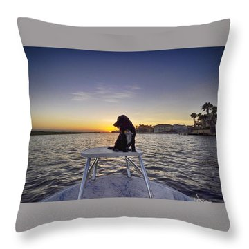Spaniel At Sunset Throw Pillow